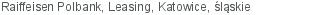 Raiffeisen Polbank Leasing Katowice śląskie